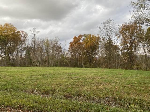 Overton Rd, Maynardville, TN 37807 (#1134188) :: Shannon Foster Boline Group