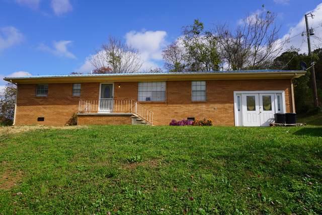 133 Ailor Drive, Maynardville, TN 37807 (#1134205) :: Realty Executives Associates Main Street