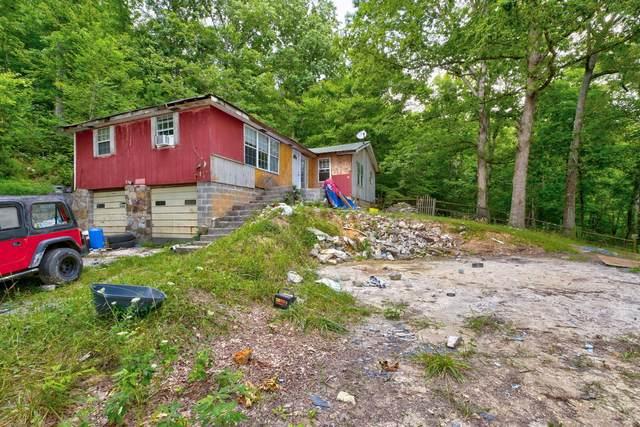 286 Ridge Rd, Maynardville, TN 37807 (#1134224) :: Shannon Foster Boline Group