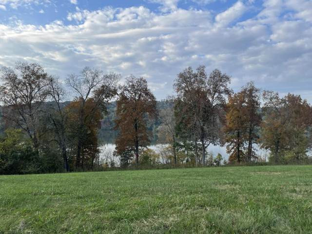 473 River Bank Tr, Loudon, TN 37774 (#1134238) :: Tennessee Elite Realty