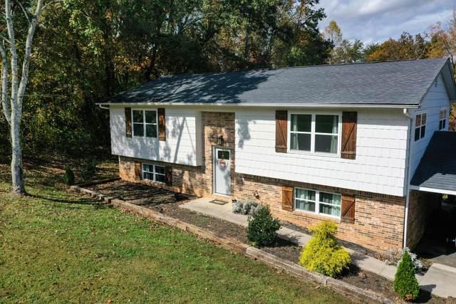 305 Dan Circle, Rockwood, TN 37854 (#1134249) :: Realty Executives Associates