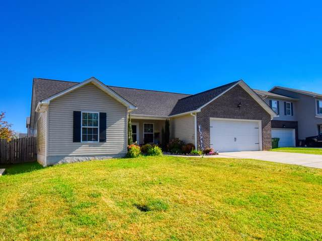 7808 Edwards Place Blvd, Corryton, TN 37721 (#1134281) :: The Cook Team