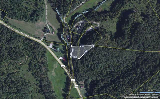 Paint Rock Crk, Oneida, TN 37841 (#1134400) :: Billy Houston Group