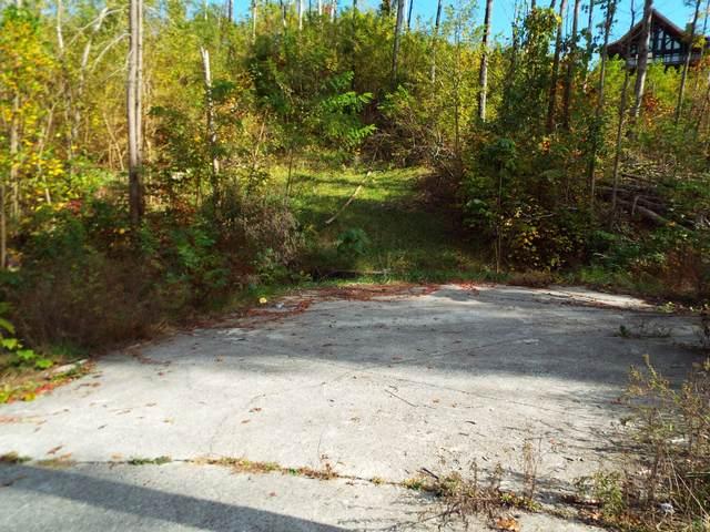 517 Wiley Oakley Drive, Gatlinburg, TN 37738 (#1134562) :: Billy Houston Group