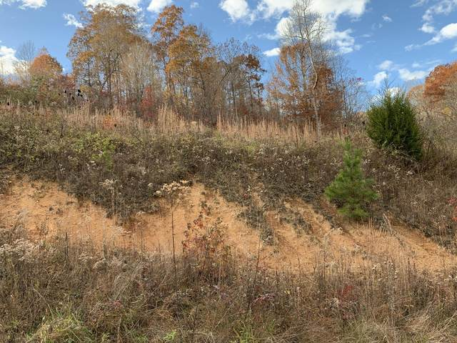 lot 71 Cameron Loop, LaFollette, TN 37766 (#1134580) :: Shannon Foster Boline Group
