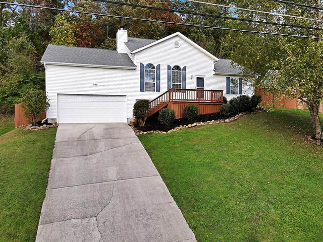 5809 Windtree Lane, Knoxville, TN 37921 (#1134675) :: Catrina Foster Group