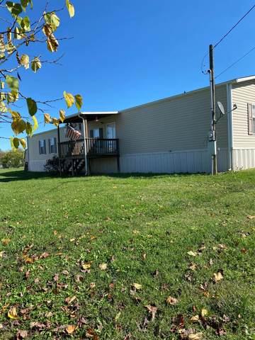 109 Defoe Rd, Andersonville, TN 37705 (#1134826) :: Billy Houston Group