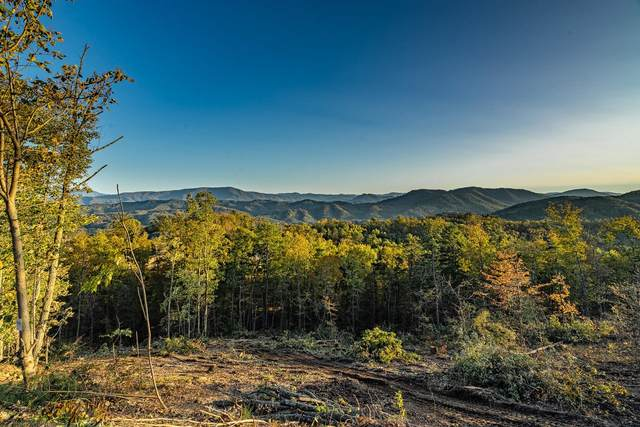 Lot 179 Smoky Bluff Tr, Sevierville, TN 37862 (#1134960) :: Realty Executives Associates Main Street