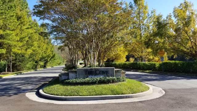 414 Turkey Cove Lane, Knoxville, TN 37934 (#1134968) :: Billy Houston Group