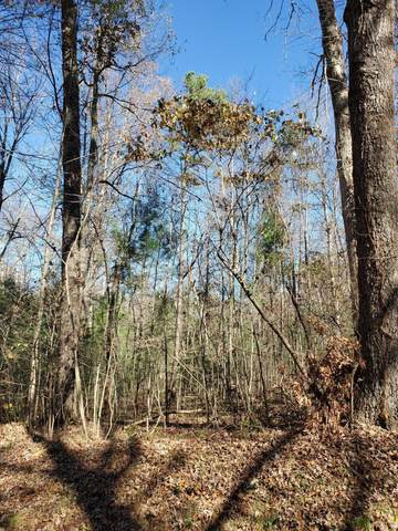 Lot 2 Cole Place Rd, Allardt, TN 38504 (#1134973) :: Shannon Foster Boline Group