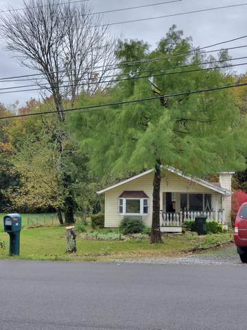 524 Kingfisher Ave, Sevierville, TN 37862 (#1135099) :: Billy Houston Group