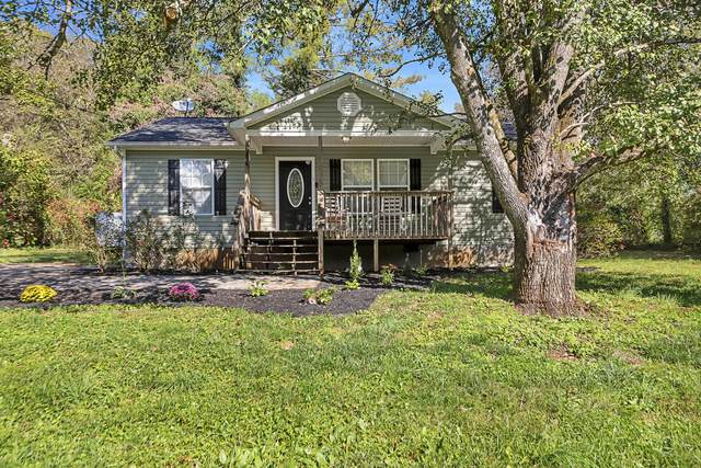 206 Stone Road Rd, Knoxville, TN 37920 (#1135181) :: Billy Houston Group