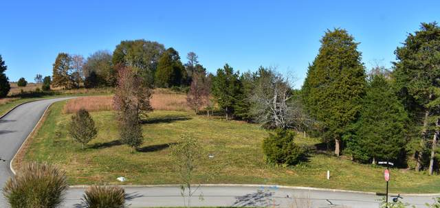 Lot# 16 Serenity Drive, Harriman, TN 37748 (#1135264) :: Tennessee Elite Realty
