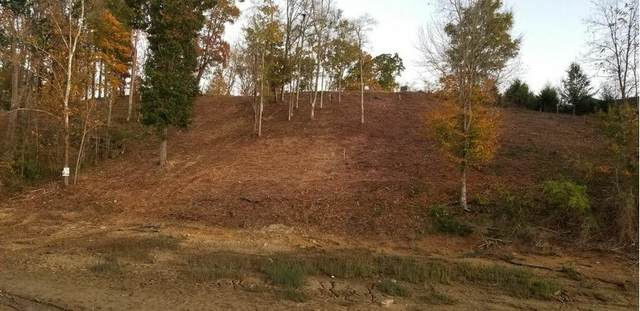 Lot 49 Rocky Point Way Way, Sevierville, TN 37876 (#1135392) :: Tennessee Elite Realty
