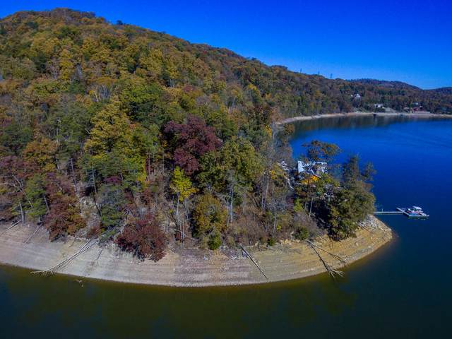 860 Wilderness Drive, Mooresburg, TN 37811 (#1135471) :: Billy Houston Group