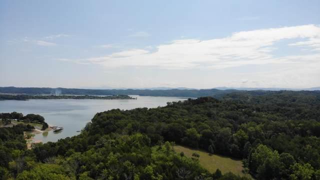 1&2 Waterside On Douglas, Dandridge, TN 37725 (#1135603) :: Tennessee Elite Realty