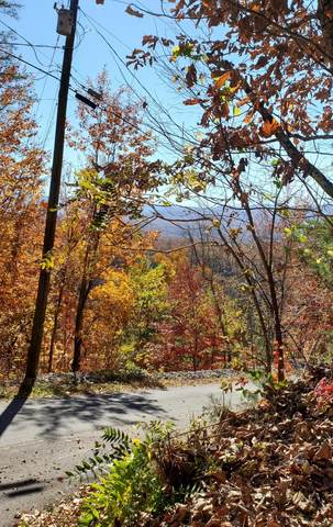 Lot 5 Mccarter Drive, Sevierville, TN 37862 (#1135610) :: Billy Houston Group