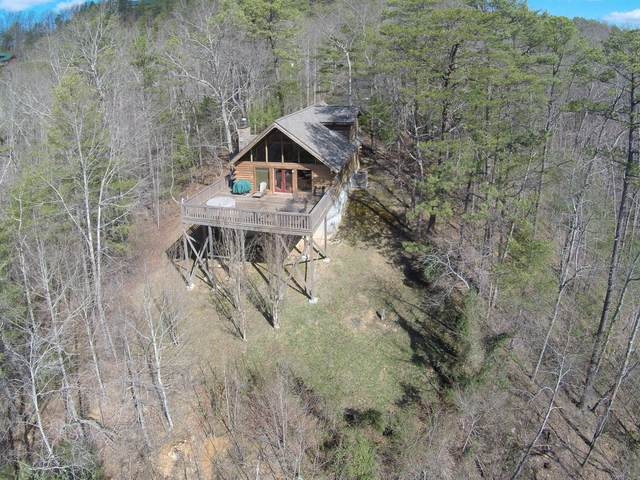113 Allison Way, Townsend, TN 37882 (#1135614) :: Billy Houston Group