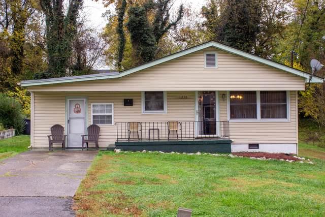 1230 Pickett Ave, Knoxville, TN 37921 (#1135618) :: Billy Houston Group