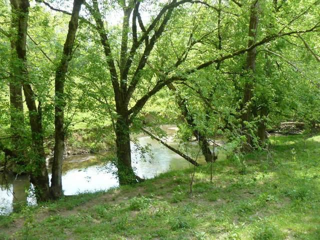 Cedar Fork Rd, Tazewell, TN 37879 (#1135724) :: Billy Houston Group