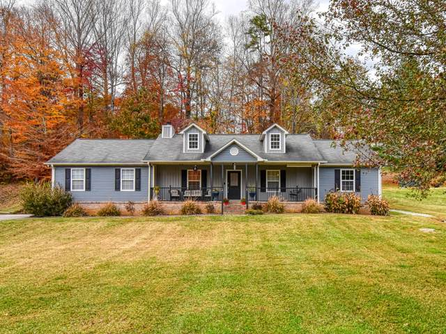 115 Wolverine Drive, Andersonville, TN 37705 (#1135727) :: Realty Executives Associates Main Street