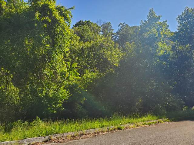 8070 W Pointe Drive, Talbott, TN 37877 (#1135807) :: Tennessee Elite Realty