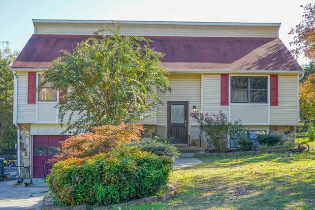 10826 Flyway Lane, Knoxville, TN 37934 (#1135849) :: Realty Executives Associates