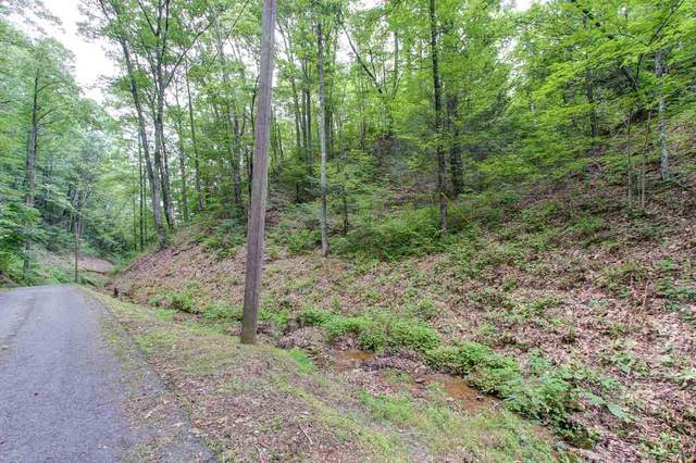 P35.02 Caney Creek Rd, Pigeon Forge, TN 37863 (#1135873) :: Realty Executives Associates Main Street
