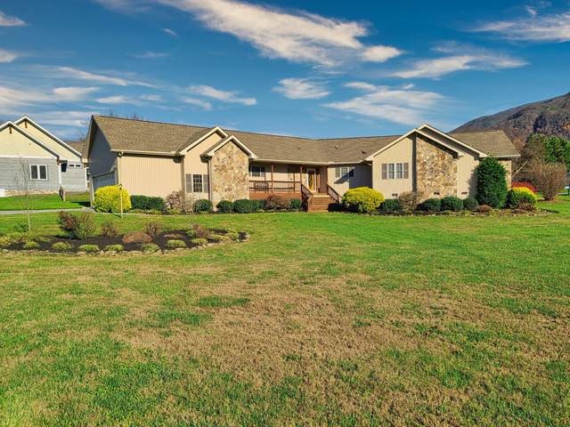 3585 Deer Field Circle, Sevierville, TN 37862 (#1135910) :: Realty Executives Associates Main Street