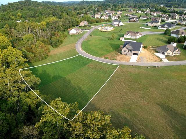 600 Running Brook Drive, Strawberry Plains, TN 37871 (#1135962) :: Realty Executives