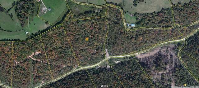 Lonesome Valley Rd, Tazewell, TN 37879 (#1136026) :: Billy Houston Group
