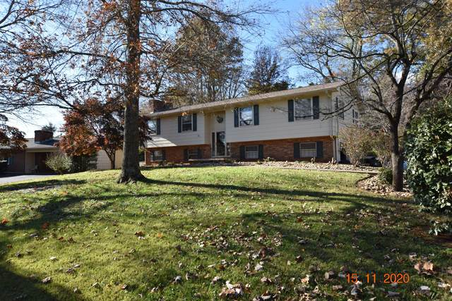509 Kendall Rd, Knoxville, TN 37919 (#1136027) :: Billy Houston Group