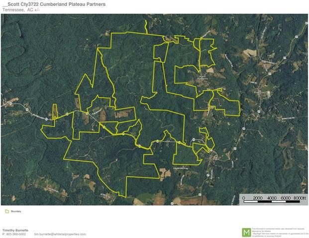 Hwy 27, Robbins, TN 37852 (#1136076) :: Billy Houston Group