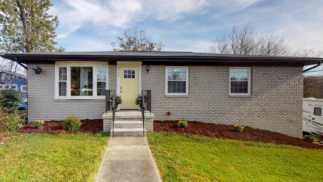 6146 Cougar Drive, Knoxville, TN 37921 (#1136174) :: Realty Executives Associates Main Street