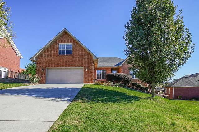 521 Crooked Stick Drive, Maryville, TN 37801 (#1136228) :: Realty Executives Associates