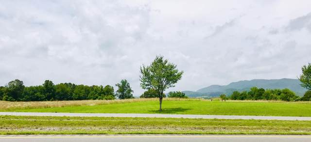Cumberland Gap Pkwy, harrogate, TN 37752 (#1136232) :: Billy Houston Group