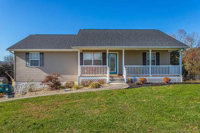359 Deer Ridge Drive, Rutledge, TN 37861 (#1136567) :: Billy Houston Group