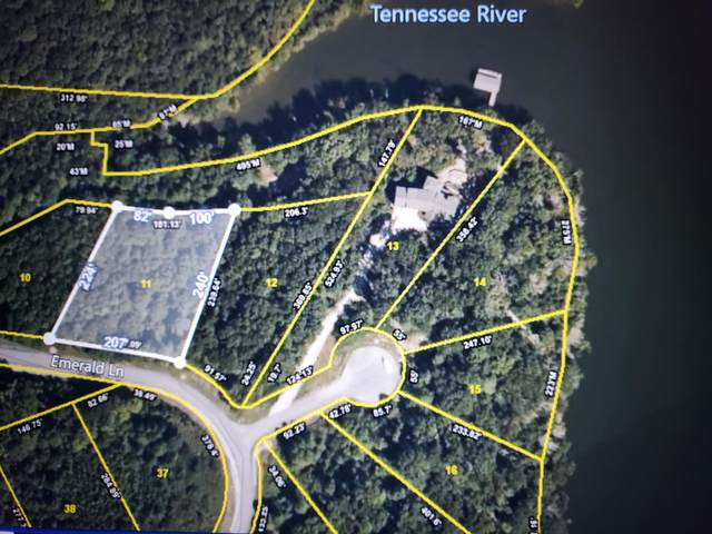 Address Not Published, Rockwood, TN 37854 (#1136588) :: Realty Executives Associates Main Street