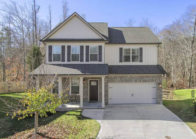 8010 Beaver Hill Lane, Knoxville, TN 37931 (#1136598) :: The Sands Group