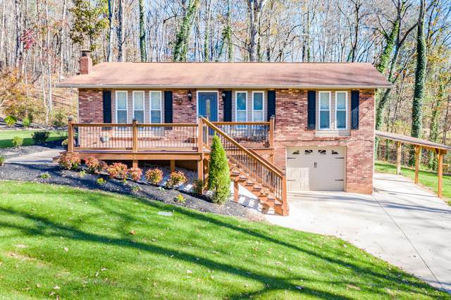116 Forest Circle, Powell, TN 37849 (#1136616) :: Realty Executives