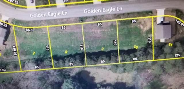 5320 Golden Eagle Lane, Corryton, TN 37721 (#1136666) :: Billy Houston Group