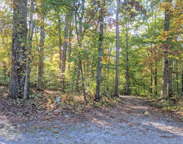 Lot 15 Old Chisholm Trail, Dandridge, TN 37725 (#1136690) :: The Sands Group