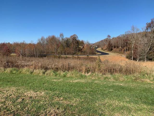 Water View Drive, Rockwood, TN 37854 (#1136716) :: The Sands Group