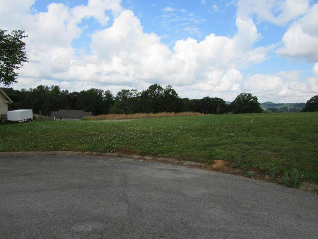 Smoky View Lane, Madisonville, TN 37354 (#1136736) :: Realty Executives Associates Main Street