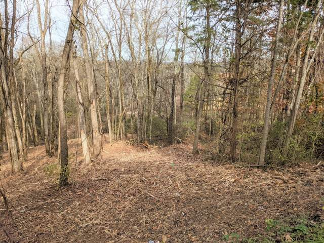 Lot 27 Lakeside Dr, White Pine, TN 37890 (#1136771) :: The Sands Group