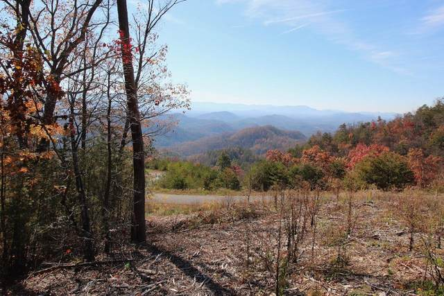 Lot 48 Mountain Ash Way, Sevierville, TN 37876 (#1136786) :: Adam Wilson Realty