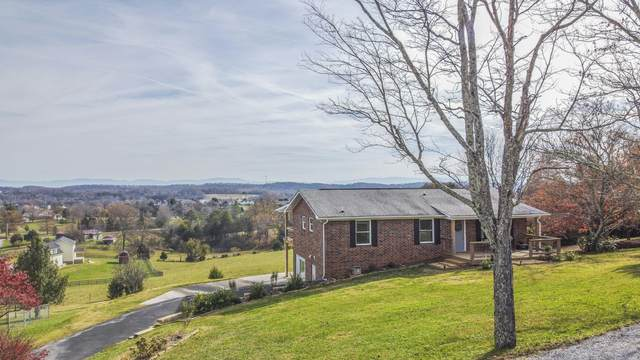 2425 Forest Heights Circle, Lenoir City, TN 37772 (#1136816) :: Realty Executives