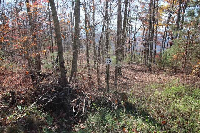 Lot 50 Mountain Ash Way, Sevierville, TN 37876 (#1136836) :: Catrina Foster Group
