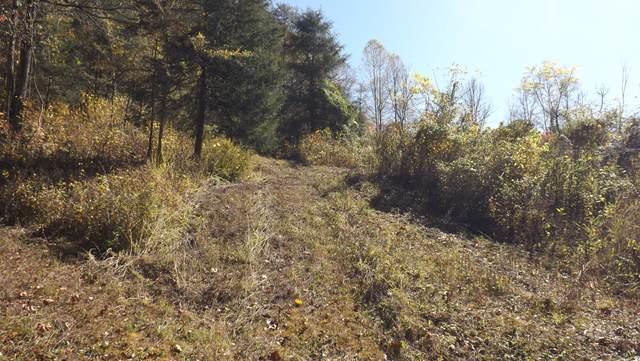 Cox Creek Lane, harrogate, TN 37752 (#1136914) :: Cindy Kraus Group | Realty Executives Associates