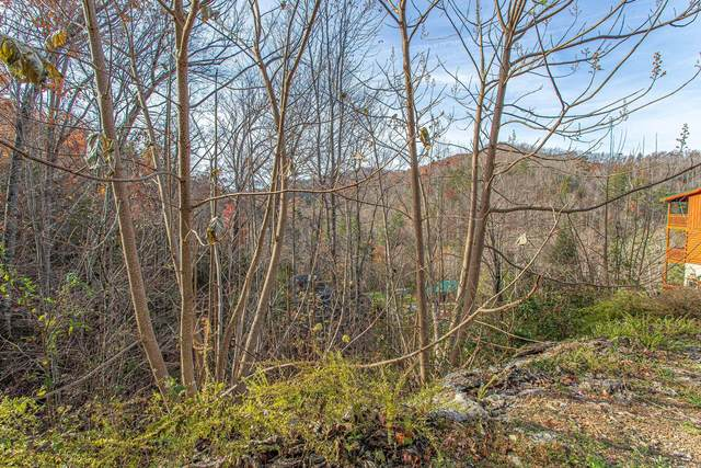 Lot 42 Smoky Ridge Way, Sevierville, TN 37862 (#1137041) :: Realty Executives Associates